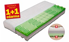 Matrace Dřevočal LEONA  1+1 ZDARMA (cena za 1ks 3930,-) + dárek (2x polštář)
